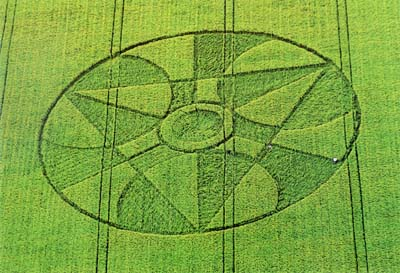 crop-circle11