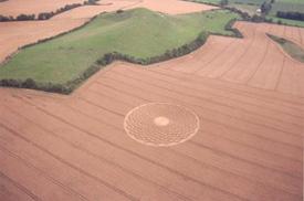 crop-circle15