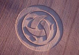 crop-circle18