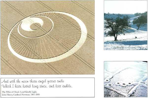 crop-circle23