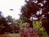 UFO / OVNI