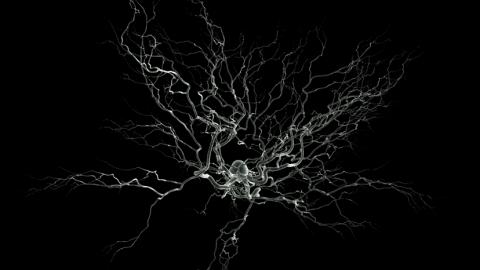 Une équipe suédoise a créé un neurone artificiel fonctionnel