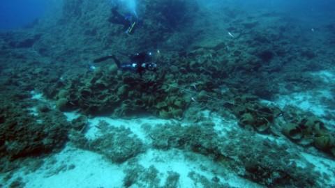 Un cimetière de vaisseaux antiques découvert en mer Egée