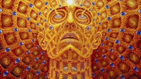 L'ayahuasca, un voyage chamanique aux frontières de la conscience.(documentaire)
