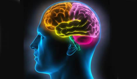 Visual of Man's Brain
