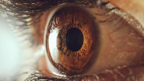 Fixer quelqu'un dans les yeux pendant 10 minutes peut altérer votre conscience
