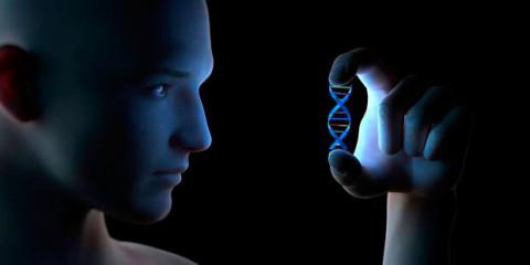 Des scientifiques ont découvert que nous pourrions vivre jusqu'à 500 ans