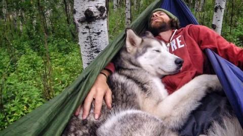 Il parcourt le monde avec son chien parce qu'il ne supportait plus de le voir enfermé