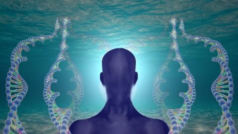 Révolution dans la médecine: on a retrouvé la mémoire de l'eau