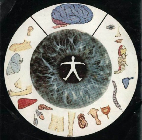 Voici ce que votre iris révèle sur votre santé