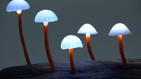 De superbes lampes LED en forme de champignons transformeront votre chambre en forêt mystique