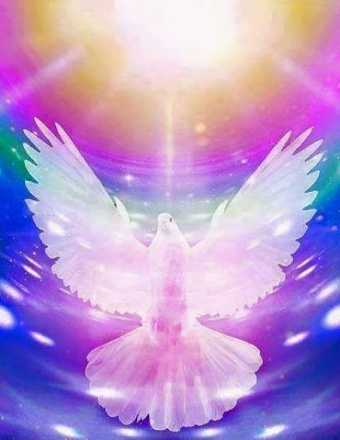 Code de conduite pour le disciple du Saint Esprit