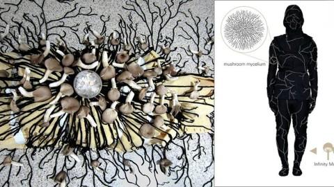 Ce costume de champignons transforme votre corps en champignons après votre mort