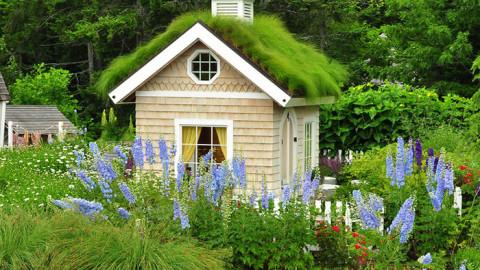 Des femmes créent la She-Shed, une cabane de jardin pour dames