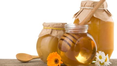 Miel de thym: une merveille pour une cicatrisation rapide et propre