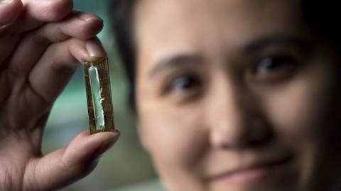 Des chercheurs ont accidentellement fait une batterie qui pourrait durer toute une vie