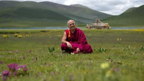Matthieu Ricard : «La pratique de la méditation m'a changé»