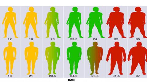 Calculez votre Indice De Masse Corporelle IMC