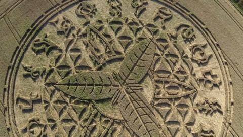 Un incroyable «crop circle» a fait son apparition à Ansty, près de Salisbury, dans le Wiltshire