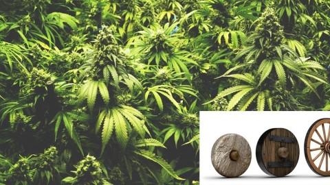 Une nouvelle preuve archéologique suggère que les drogués antiques auraient inventé la roue