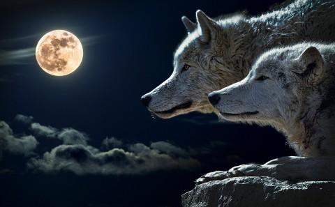 Une lune noire montera en Balance ce vendredi 30 septembre 2016