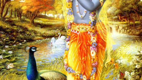 Le Rayon de Shiva
