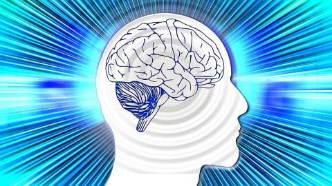 Une nouvelle recherche prouve que l'alimentation, et non les médicaments, améliore la santé mentale