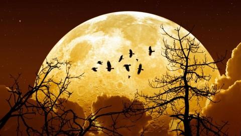 Préparez-vous à un changement majeur! Une super Lune rare en Bélier – le 16 Octobre, 2016