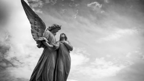 « LE PARADIS DES ANGES DÉÇUS » par Lena Artao