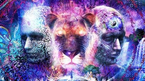 LE SMACK DE L'UNIVERS – Messages intuitifs pour flammes jumelles