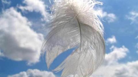 Exemples de signes des anges