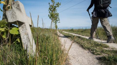 A contre courant sur le chemin de Compostelle (docu)