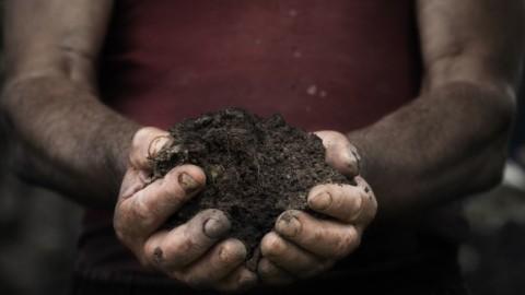 Des chercheurs ont découvert que le jardinage est un antidépresseur naturel
