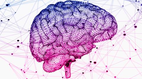 9 faits surréalistes sur votre cerveau dont vous n'avez jamais entendu parler