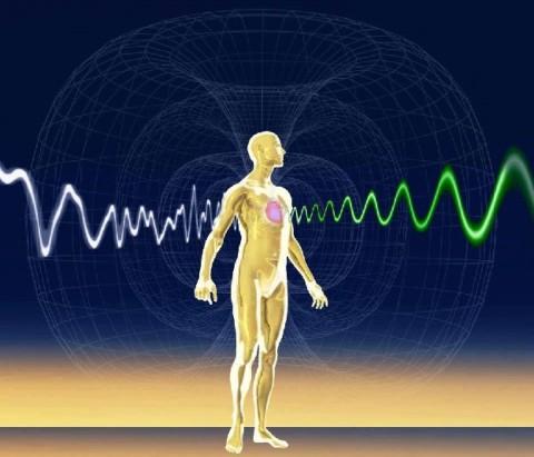 Des scientifiques ont découvert un 6ème sens magnétique chez les humains, comme les animaux