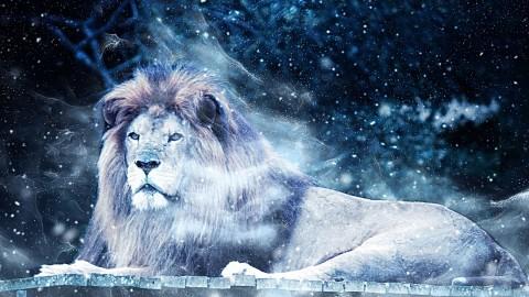 4 choses à savoir sur l'ouverture du Portail du Lion le 8 août