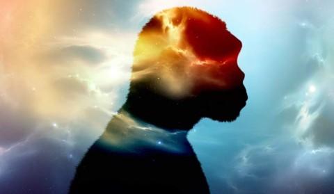 Des chercheurs révèlent la présence d'un mystérieux ancêtre humain dans notre salive
