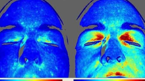 Une recherche montre ce qui se passe dans le corps humain lorsque nous marchons pieds nus