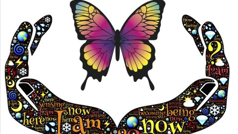 Les Papillons: les messagers spirituels avec des ailes