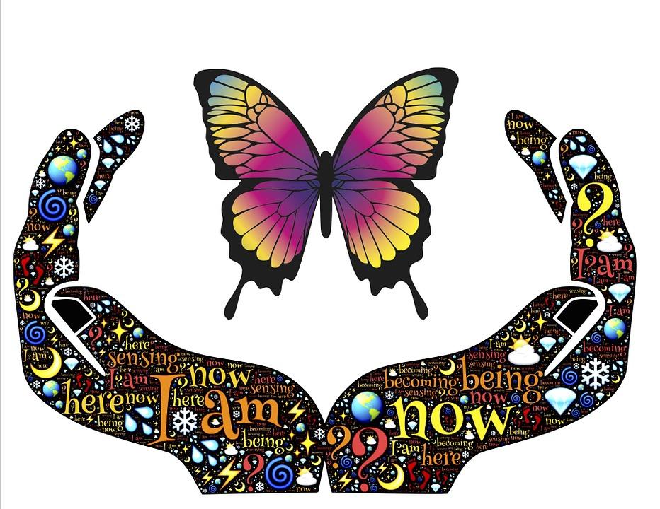 Papillons-les-messagers-spirituels.jpg