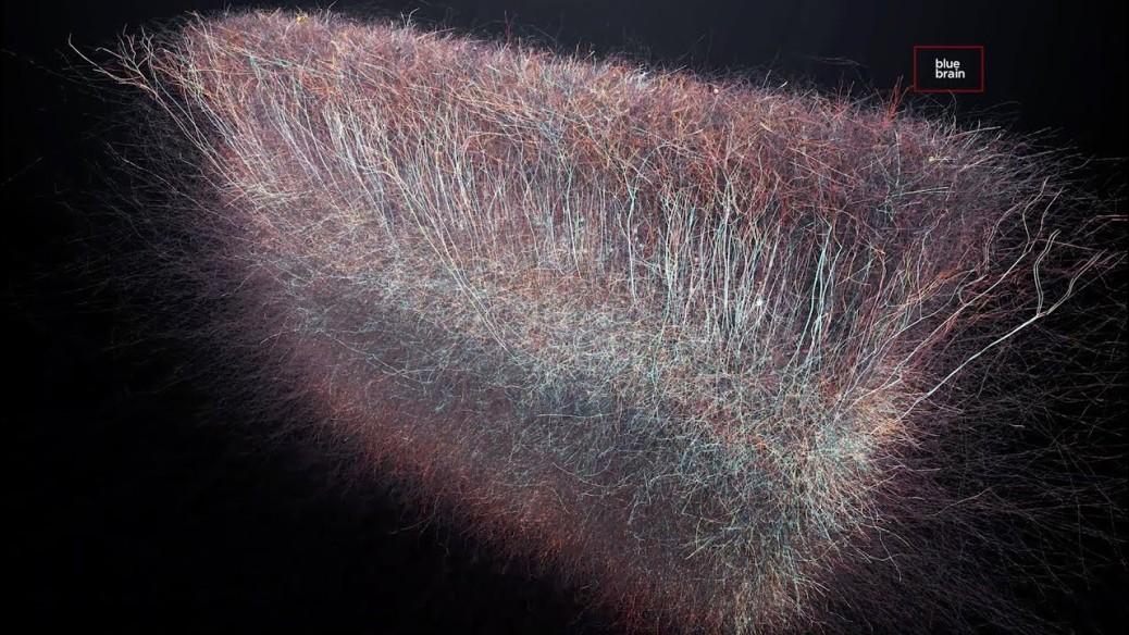 univers-multidimensionnel-dans-notre-cerveau-2.jpg