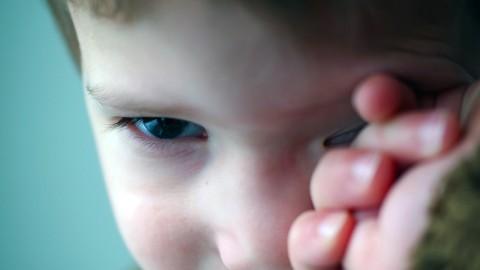 Lesperturbateursendocriniens, source de troubles du comportement chez les petits garçons