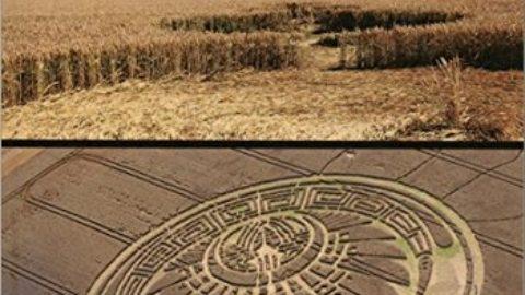 Crop circle – Expériences interdites