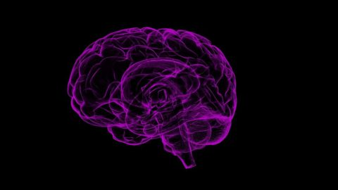 Une étude vient de découvrir que le cerveau des femmes est plus réactif à la générosité