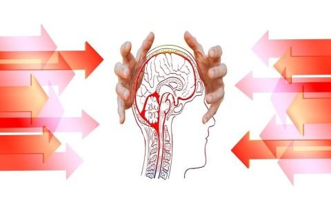 Des scientifiques suggèrent que l'esprit n'est pas limité au cerveau