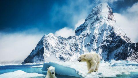 La fonte des glaces entraîne la réapparition de maladies qui avaient disparu il y a 1000 ans