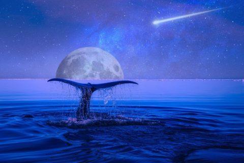 Lune bleue du 31 Janvier 2018 :Une éclipse lunaire coïncidera avec une lune bleue pour la première fois depuis plus de 150 ans