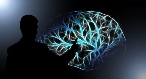 Une étude établit un lien entre la conscience humaine et une loi qui régit l'Univers