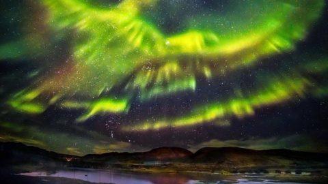 Phénix qui renaît: aurore boréale d'un oiseau légendaire en Islande