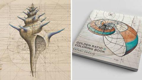 Un livre de coloriage Fibonacci célèbre la beauté mathématique de la nature